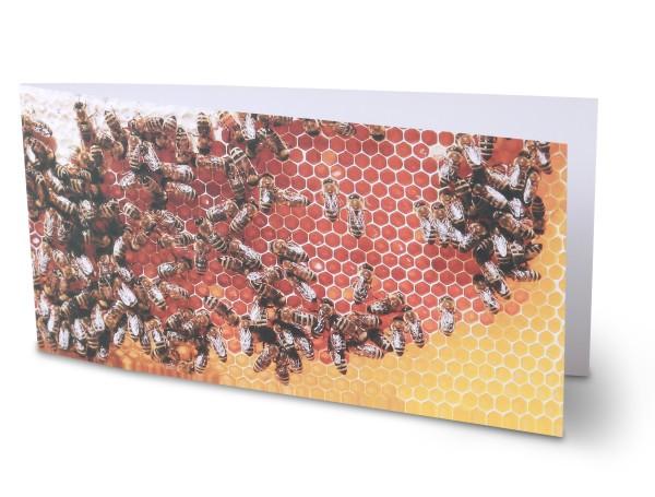 Grußkarte mit Motiv Bienen auf Honigwabe (3 Stück)