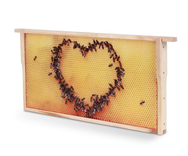 Bienenwaben-Bild: Honigwabe mit Bienen-Herz