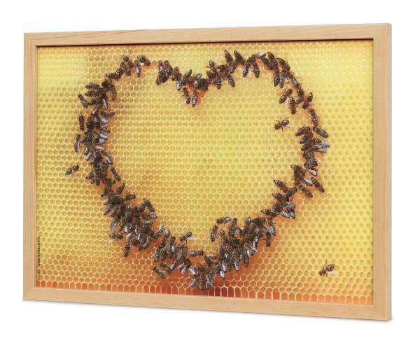 Bienenwaben Bild Motiv Bienen-Herz im Glas-Bilderrahmen