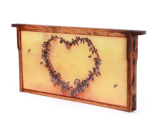 Bienenwaben-Bild: Honigwabe mit Bienen-Herz, Rahmen shabby