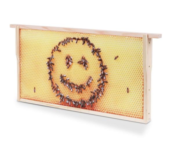 Bienenwaben-Bild: Honigwabe mit Bienen-Smiley