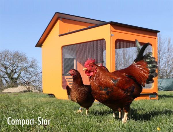 Compact-Star fertig aufgebaut und lackiert: